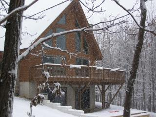Pocono Chalet - All Seasons With Incredible Views - Albrightsville vacation rentals