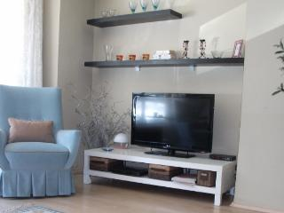 ankara in Çankaya stylish apartment 1 + 2  90 usd - Ankara vacation rentals