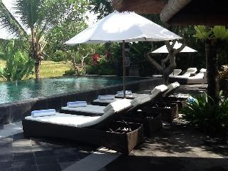 Beautiful 5 bedroom Villa in Ketewel - Ketewel vacation rentals