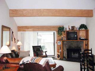 BC West O-4 w/ FREE Skier Shuttle - Avon vacation rentals