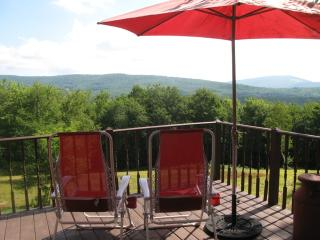 Fabulous, Private, Contemporary Paradise! - Roxbury vacation rentals