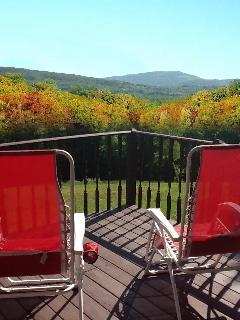 Fabulous, Private, Contemporary Paradise! - New Kingston vacation rentals