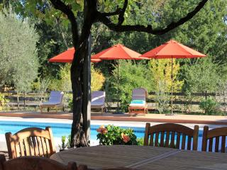 Villa Ticino - Romantic and Exclusive Vineyard Estate - Kenwood vacation rentals