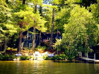 Pet-Friendly Lakefront Retreat for All Seasons - Lake Winnipesaukee vacation rentals