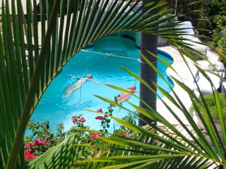 Lovely 1 bedroom Apartment in Providenciales - Providenciales vacation rentals