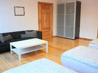 OLD TOWN Apartment - Poznan vacation rentals