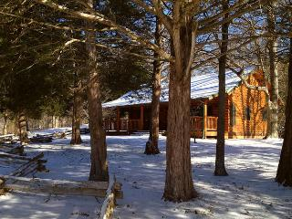 Cinnamon Valley - 'The Cattail' - Eureka Springs vacation rentals