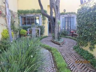 Lovely House with Internet Access and Dishwasher - San Miguel de Allende vacation rentals