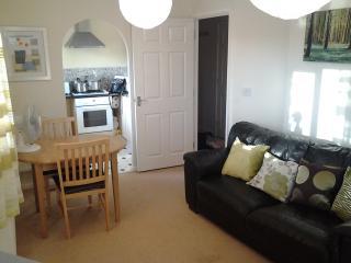 Serviced Apts Wolverhampton West Midlands, England - Wolverhampton vacation rentals