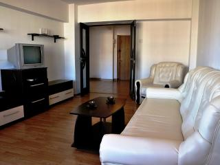 Central Accommodation ZEPTER - Bucharest vacation rentals