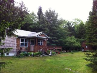 Catskills Mid-Century Modern Cottage - FABulous! - Livingston Manor vacation rentals