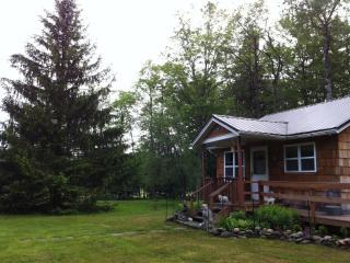 Mid-Cen Mod Cottage - The Catskills  FABULOUS! - Livingston Manor vacation rentals