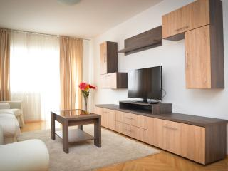 Central Accommodation RIB 4 - Bucharest vacation rentals