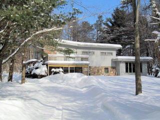 LHE101 - Lake Harmony vacation rentals