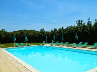 1 bedroom Apartment with Shared Outdoor Pool in Colle di Val d'Elsa - Colle di Val d'Elsa vacation rentals