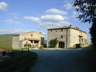 4 bedroom Condo with Shared Outdoor Pool in Radda in Chianti - Radda in Chianti vacation rentals