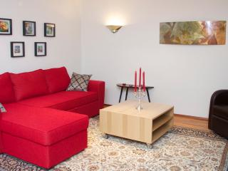 Extremely nice and spacious apartment  in centrum - Reykjavik vacation rentals