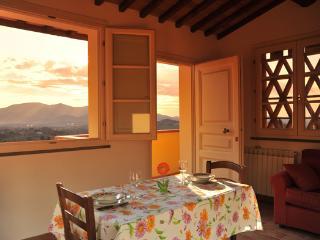 Il Limone - Capannori vacation rentals