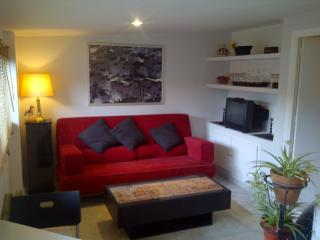 Independent guesthouse with use of pool (summer) - Madrid Area vacation rentals