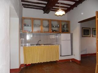 Boschi - Castellina In Chianti vacation rentals
