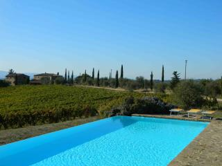 Nice 5 bedroom Castellina In Chianti House with Internet Access - Castellina In Chianti vacation rentals