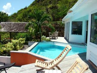Oceana at Vitet, St. Barth - Ocean View, Pool, Private - Vitet vacation rentals