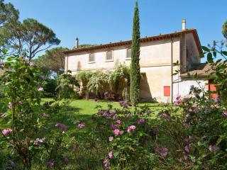 5 bedroom House with Central Heating in Grosseto - Grosseto vacation rentals