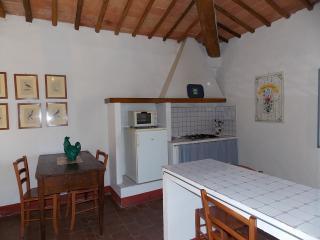 Visentini - Castellina In Chianti vacation rentals