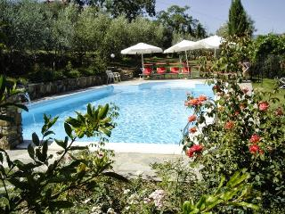 Comfortable House with Central Heating and Satellite Or Cable TV - Pergine Valdarno vacation rentals