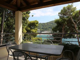 Exclusive apartment in Dubrovnik! - Sveti Martin na Muri vacation rentals