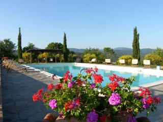 1 bedroom Chalet with Shared Outdoor Pool in Massa Marittima - Massa Marittima vacation rentals