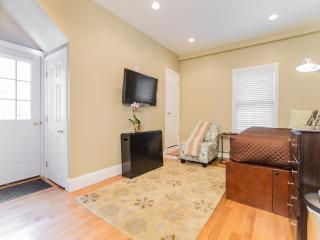 Beautiful Condo with Internet Access and A/C - Cambridge vacation rentals