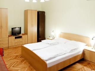 Marshal's FLAT IN PEDESTRIAN AREA - Belgrade vacation rentals