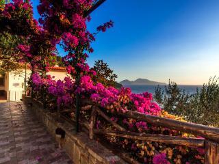 Villa Beatrice Sorrento view on Capri private pool - Massa Lubrense vacation rentals