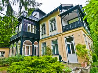 Villa Marie - Penthouse in the Vienna Forest - Purkersdorf vacation rentals