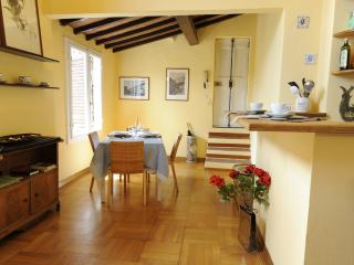 San Felice Apartment - Florence vacation rentals