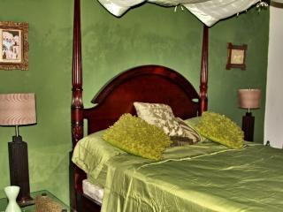 BNB La Pantera Negra Green Room - Merida vacation rentals