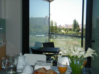 City Centre With Green Views To Park Eduardo VII - Lisbon vacation rentals