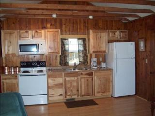 Semi Secluded  Cabin on Bluff overlooking Lake - Hot Springs vacation rentals