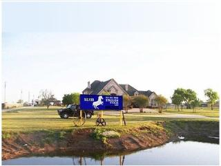 Gorgeous Ranch Home 15 min from Fort Worth - Fort Worth vacation rentals