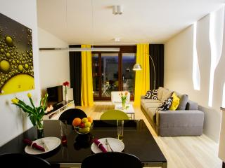 Beautiful 1 bedroom Wroclaw Apartment with Internet Access - Wroclaw vacation rentals