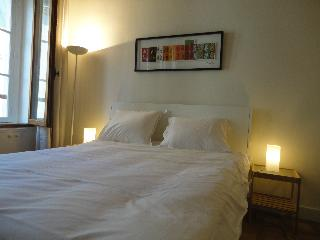 Studio Mouffetard in the Latin Quarter of Paris - Paris vacation rentals