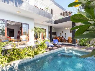 Perfect 4 bedroom Villa in Canggu - Canggu vacation rentals