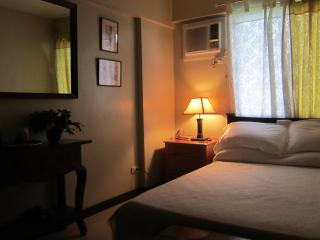 Nice Condo with Internet Access and A/C - Patnongon vacation rentals