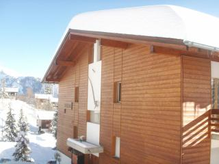 Chalet in Ski Resort, Penthouse apt - Anzere vacation rentals