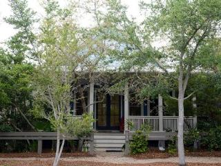 131 Mystic Cobalt Street - Watercolor vacation rentals