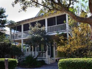 154 Silver Laurel Way - Watercolor vacation rentals