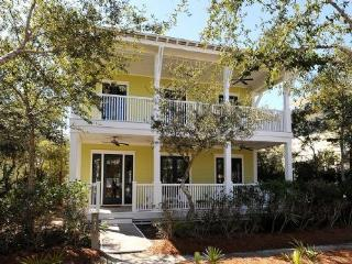 Charming 5 bedroom Watercolor Cottage with Internet Access - Watercolor vacation rentals