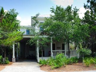 753 Western Lake Drive - Watercolor vacation rentals