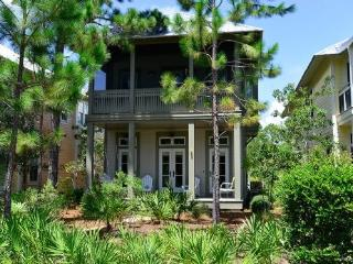 135 Winterberry Circle - Watercolor vacation rentals